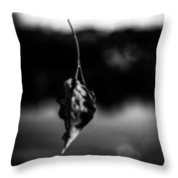 Natures Illusion Throw Pillow