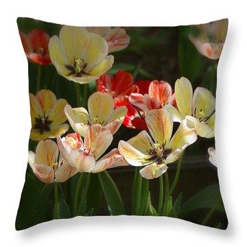 Throw Pillow featuring the photograph Natures Joy by Randy Pollard