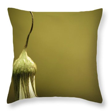 Nature's Little Lamp Throw Pillow by Shane Holsclaw