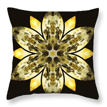 Nature's Mandala 57 Throw Pillow by Derek Gedney