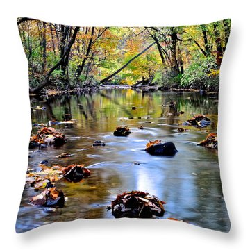 Natures Mood Lighting Throw Pillow by Frozen in Time Fine Art Photography