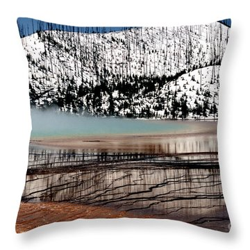 Throw Pillow featuring the photograph Nature's Mosaic I by Sharon Elliott