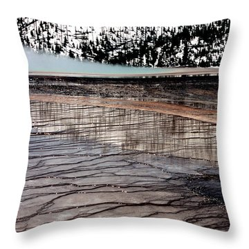 Throw Pillow featuring the photograph Nature's Mosaic II by Sharon Elliott