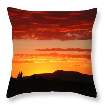 Natures Orange Paint Throw Pillow