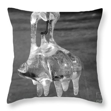 Throw Pillow featuring the photograph Nature's Ornament by Nina Silver