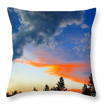 Throw Pillow featuring the photograph Nature's Palette by Barbara Chichester
