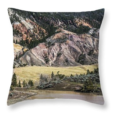 Nature's Palette Throw Pillow by Sandi Mikuse