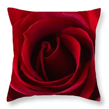Natures Perfection All Proceeds Go To Hospice Of The Calumet Area Throw Pillow