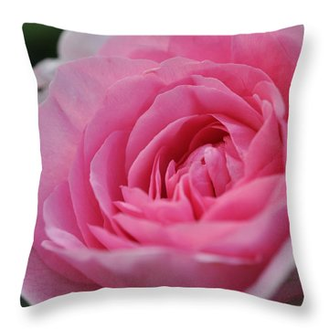 Throw Pillow featuring the photograph Nature's Pink by Sabine Edrissi