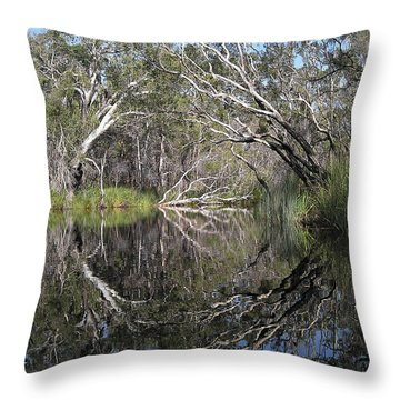 Natures Portal Throw Pillow