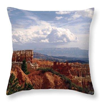 Throw Pillow featuring the photograph Nature's Symmetry by Meghan at FireBonnet Art