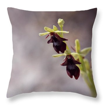 Natures Trick - Mimicry Throw Pillow