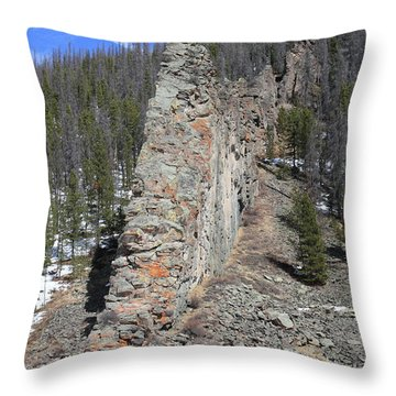 Nature's Wall Throw Pillow