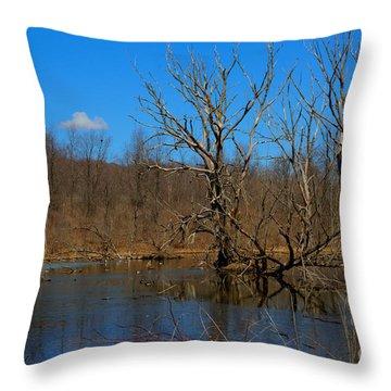 Nature's Wasteland Throw Pillow