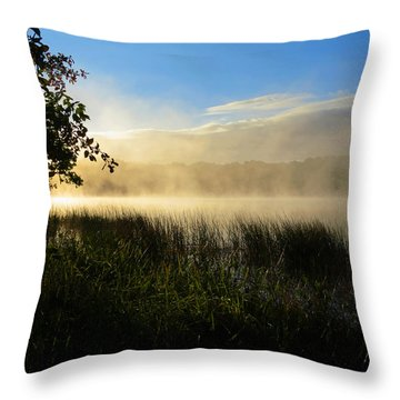 Nature's Way Throw Pillow by Dianne Cowen