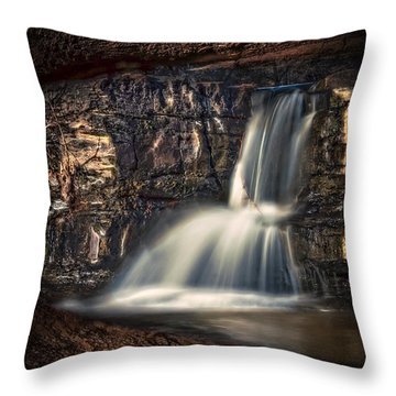 Natures Window Throw Pillow