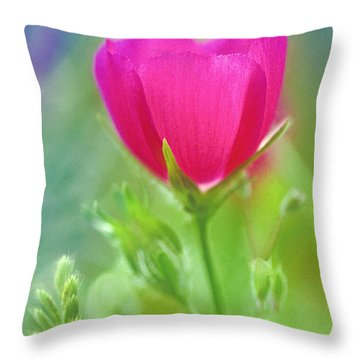 Throw Pillow featuring the photograph Natures Winecup South Texas by Dave Welling