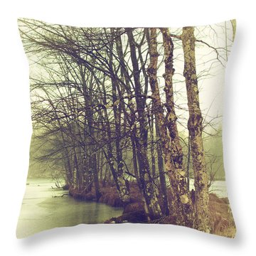 Natures Winter Slumber Throw Pillow by Karol Livote