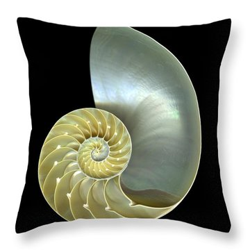 Seashell Throw Pillows For Sale