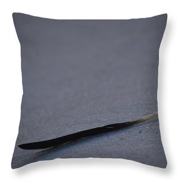 Navarre Beach Solo Bird Feather Throw Pillow by Jeff at JSJ Photography