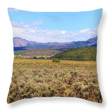 Near Chama New Mexico Throw Pillow