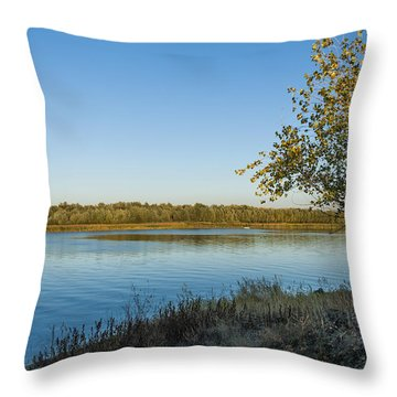 Near River Throw Pillow by Svetlana Sewell