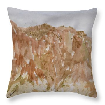Throw Pillow featuring the painting Near The Campsite - Chisos Basin by Joel Deutsch