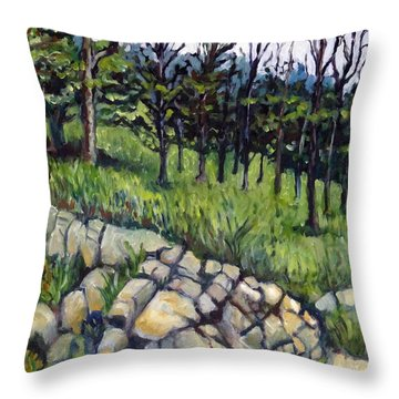 Near Three Rivers Throw Pillow