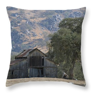 Throw Pillow featuring the photograph Nearly Gone by Debby Pueschel