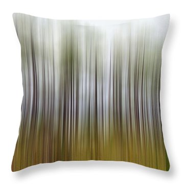 Nearly Spring Throw Pillow by Jan Amiss Photography