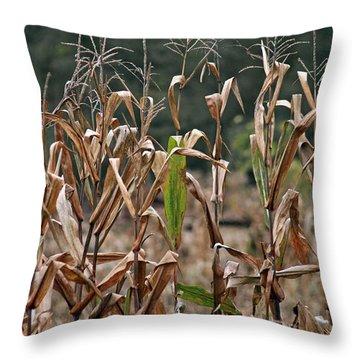Neball Corn Field Throw Pillow