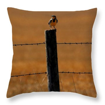 Nebraska's Bird Throw Pillow by Elizabeth Winter