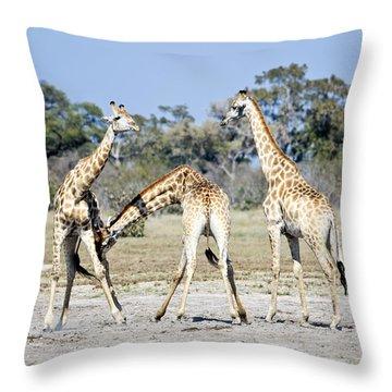 Throw Pillow featuring the photograph Necking Giraffes Botswana by Liz Leyden