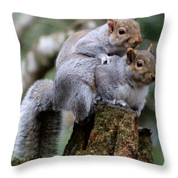Fifty Shades Of Gray Squirrel Throw Pillow