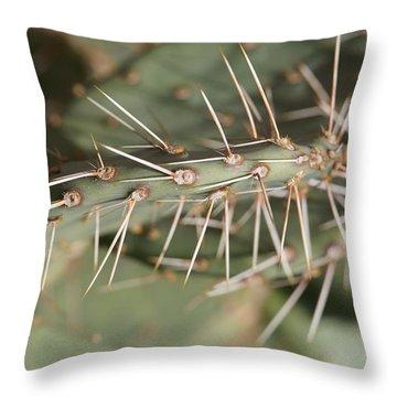 Needle Throw Pillow