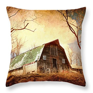 Neglected Throw Pillow by A New Focus Photography