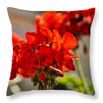 neighbour's flower DB Throw Pillow