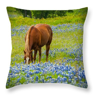 Nelly Grazing Among The Bluebonnets Throw Pillow