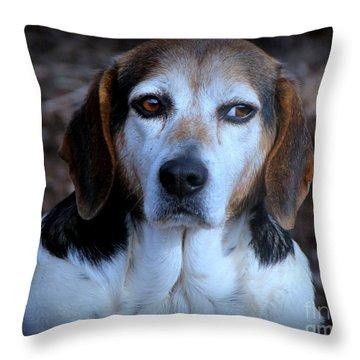 Nelson Throw Pillow