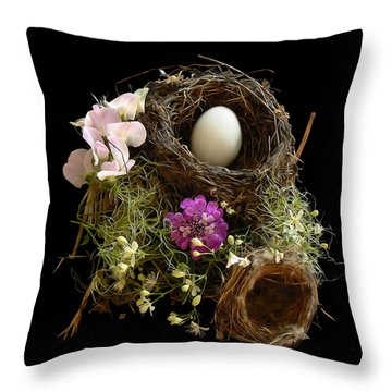 Nest Egg Throw Pillow by Barbara St Jean