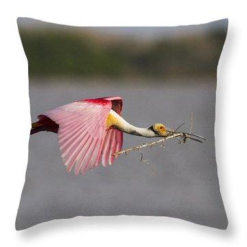 Nest Material Throw Pillow by Doug Lloyd