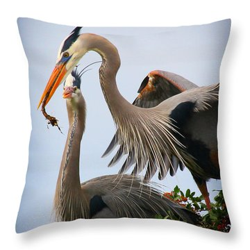 Nestbuilding Throw Pillow