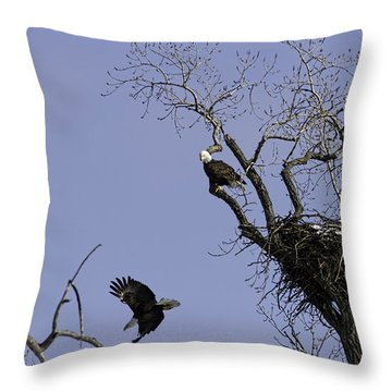 Nesting Pair Of American Bald Eagles 2 Throw Pillow by Thomas Young