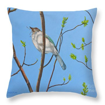 Nesting Scrub Jay Throw Pillow by K L Kingston