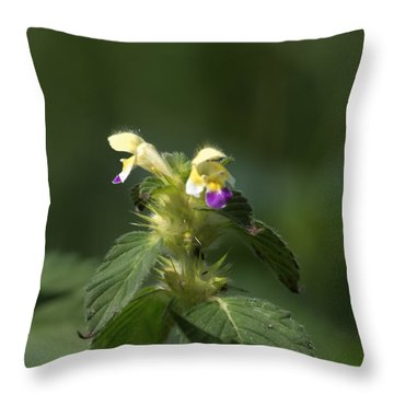 Throw Pillow featuring the photograph Nettle by Leif Sohlman