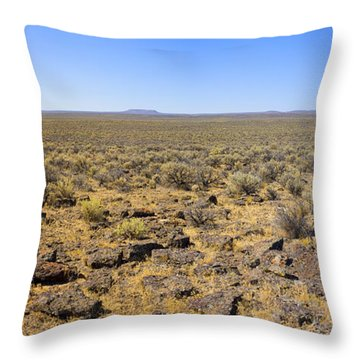Throw Pillow featuring the photograph Nevada Desert Panorama by Mark Greenberg