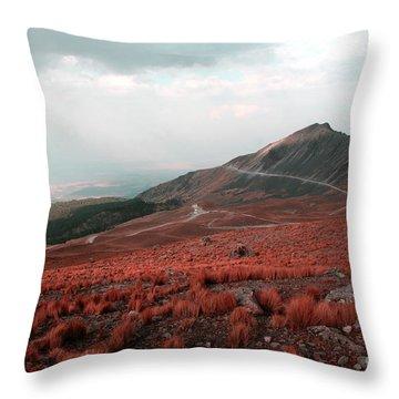 Nevado De Toluca Mexico II Throw Pillow