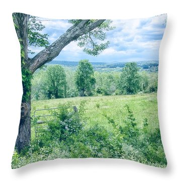 Never Ending Fields Throw Pillow by Karol Livote