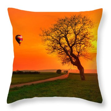 Never Ending Road Throw Pillow