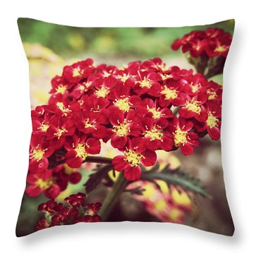 Unfadeable Beauty Throw Pillow by Zinvolle Art